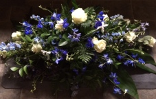 Blue and white delphinium, avalanche roses