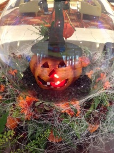 Pumpkin with witches hat in glass bowl arrangement