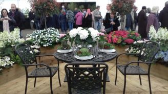 Cardiff Flower Show 4